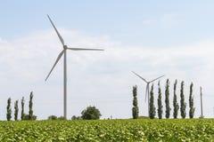 Windturbines voor elektriciteitsproductie royalty-vrije stock afbeeldingen