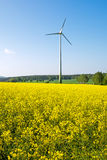 Windwheel and rapeseed field Stock Photos