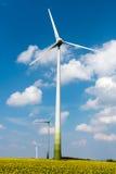 Windwheels в поле рапса семени масличной культуры Стоковые Изображения RF