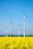Windwheels и желтый рапс Стоковая Фотография