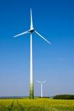 windwheels rapeseed поля Стоковые Фото