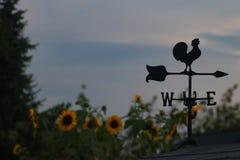 Windwijzer stock afbeeldingen