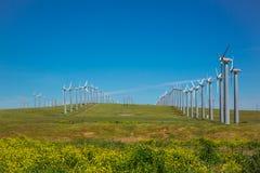 Windwill Stock Photography