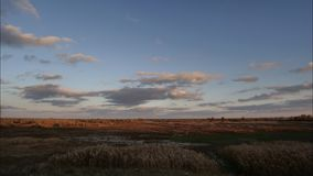 Windy Autumn Sky arkivfilmer
