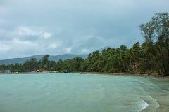 Windy beach Royalty Free Stock Photo