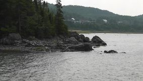 Windy and cloudy day in Bic National Park, Quebec, making the trees move. And some little waves hitting the rock stock footage