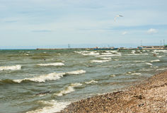 Windy day. Waves in sea on windy day Royalty Free Stock Photography