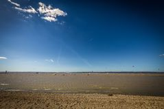 Windy day on green beach of lake Neusiedler in Podersdorf with windsurfers royalty free stock images