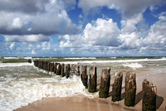 Windy day at seaside. Baltic sea Stock Images