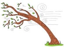 Windy Day Tree Bending Broken-Takken Royalty-vrije Stock Foto's