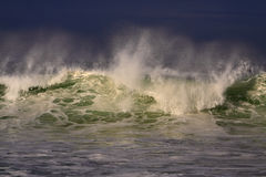 Windy green sea wave spray Royalty Free Stock Images