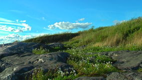 Windy hill stock footage