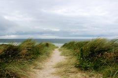 Windy Ireland, path to the beach. Very windy day. Irish summer Stock Photography