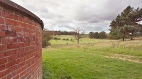 Windy landscape Royalty Free Stock Image