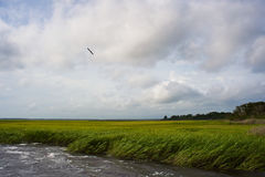 Windy Marsh. Marsh grass on a windy day with low clouds, blue sky, and rough water with whitecaps Stock Photo