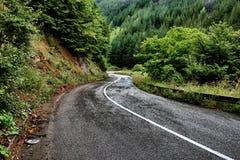 Windy Mountain Road After Rain, Serbien stockfotografie