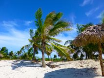Windy paradise beach in Cuba royalty free stock photos