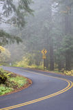 Windy Road on a Foggy Day Royalty Free Stock Photos