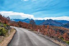 Windy Road nelle alpi albanesi Fotografia Stock Libera da Diritti