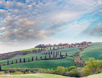 Windy road on a Tuscany hill with cypresses Royalty Free Stock Images