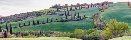 Windy road on a Tuscany hill with cypresses Stock Photos