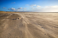 Windy sand beach in Ijmuiden Stock Photography