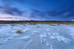Windy sand beach on North sea in dusk Royalty Free Stock Photography