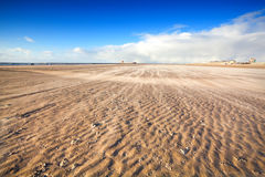 Windy beach by North sea stock photos