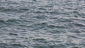 Windy sea surface with small waves. Windy sea surface background with small waves stock footage