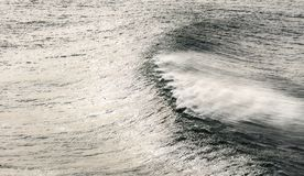 Windy seascape with wave. Spraying royalty free stock photo