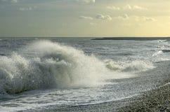 Windy seashore Royalty Free Stock Photography