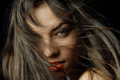 Windy sexuality. Portrait of the pretty woman with windy hairs Royalty Free Stock Images