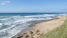 Windy shore Royalty Free Stock Photos