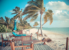 Windy tropical beach scene Royalty Free Stock Image