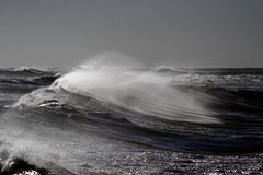 Windy waves Royalty Free Stock Photos