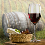 Wine. Glass of red wine with vineyard in background Stock Photo