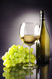 Wine. Withe wine with grappes and Wine Bottle Stock Photos