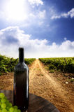 Wine. Bottle against a vineyard Royalty Free Stock Photo