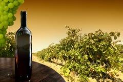 Wine. Bottle against a vineyard Stock Image