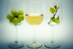 Wine. Three glasses with white wine, vine grapes and green vine leaf Stock Photo