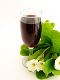 Wine. The Red Wine and primulas Royalty Free Stock Image