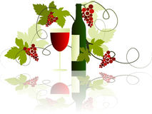 Wine. Illustration of wine with grape, bottle and glass Stock Photo
