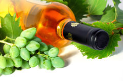 Free Wine Royalty Free Stock Photos - 2843158