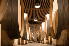 Wine. Cellar with wooden barrels Royalty Free Stock Image