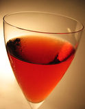 Wine. Glass of Rose wine royalty free stock photography