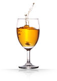 Wine. Champagne in a wine glass on isolated background with clipping path Royalty Free Stock Image