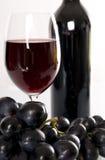 Wine. Stock Image
