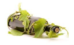 Wine. Bottle of wine studio isolated Stock Images
