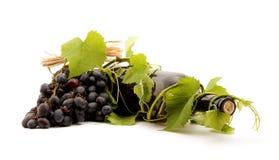 Wine. Bottle of wine studio isolated Royalty Free Stock Images