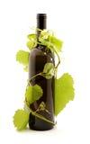 Wine. Bottle of wine studio isolated Stock Photography